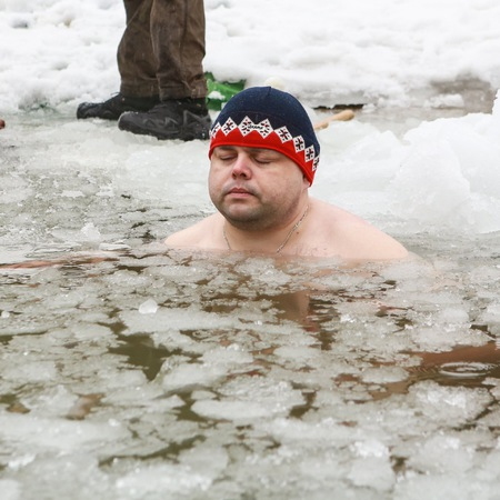 jenca-v-ledu